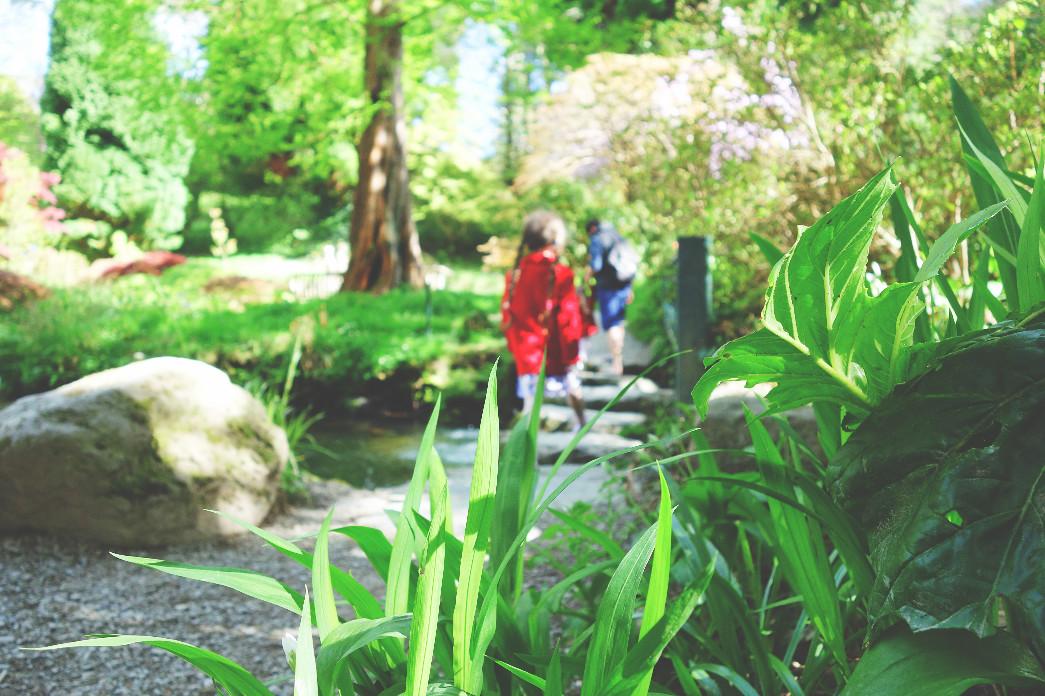 Bodnant National Trust